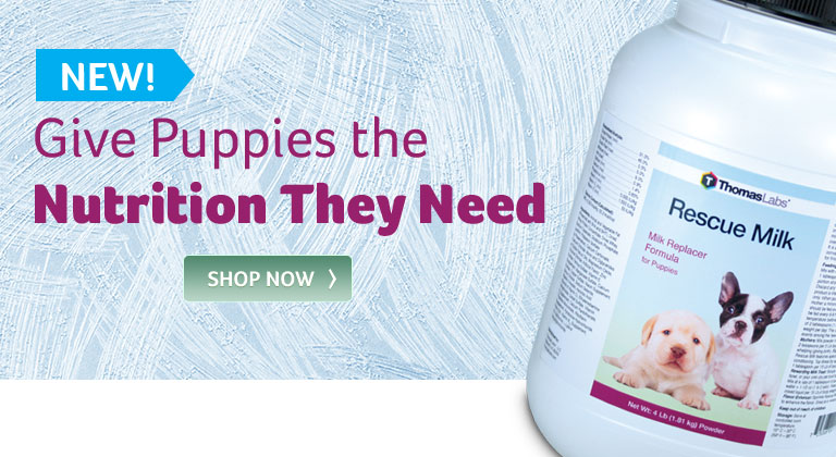 Give Puppies the Nutrition They Need