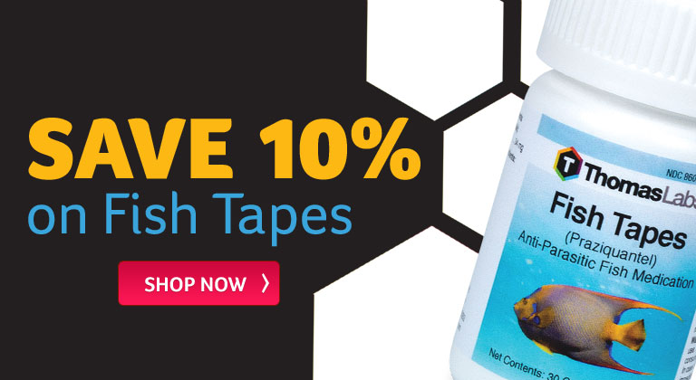 Fish Tapes on Sale!
